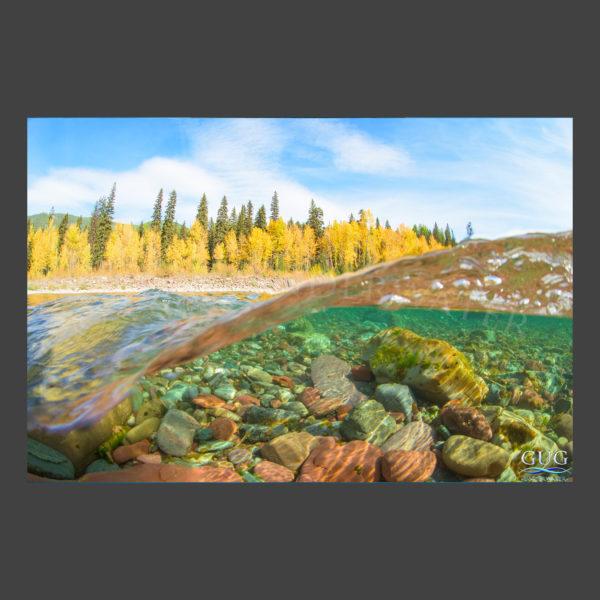 Autumns Tide